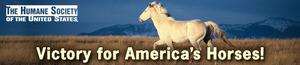 Alert_victory_horses_1