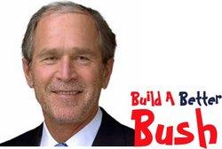 Bush_1